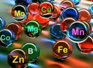 Значение микроэлементов.
