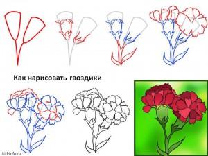 Как нарисовать цветок. Ирис Цветок