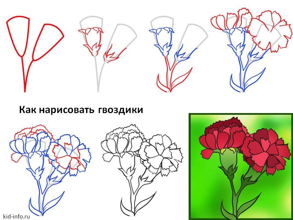 Нарисовать открытку цветы поэтапно