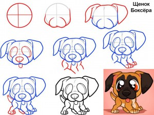Как нарисовать щенка Боксёра