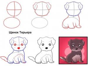 Как нарисовать щенка Терьера