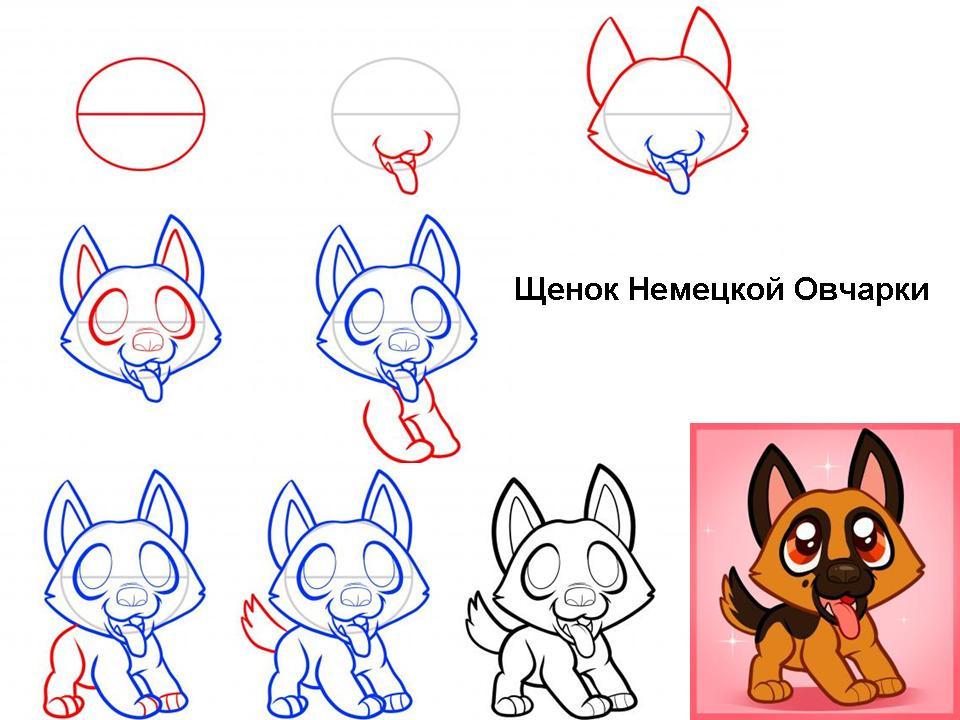 Как нарисовать щенка Немецкой