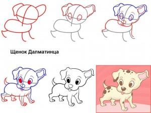 Как нарисовать щенка Далматина