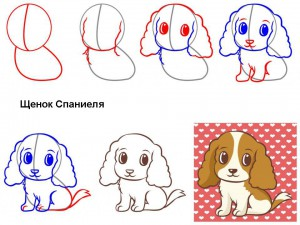 Как нарисовать щенка Спаниеля