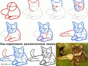 Реалистичная кошка