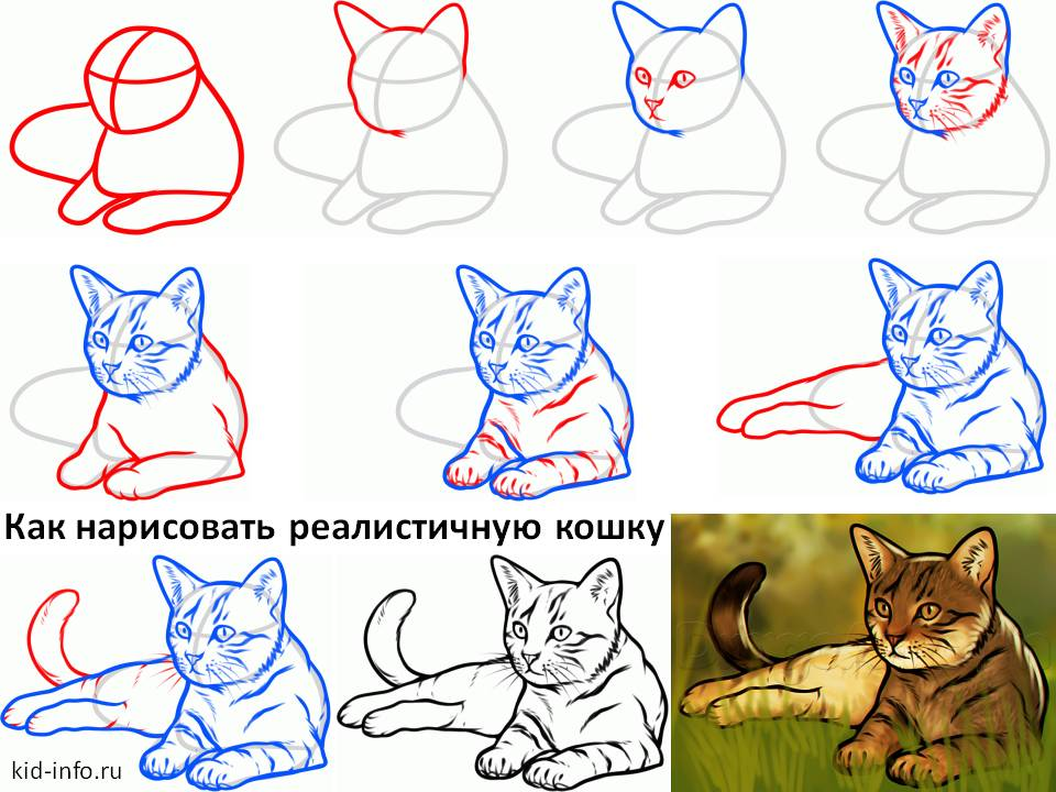 Как нарисовать кошку и котёнка