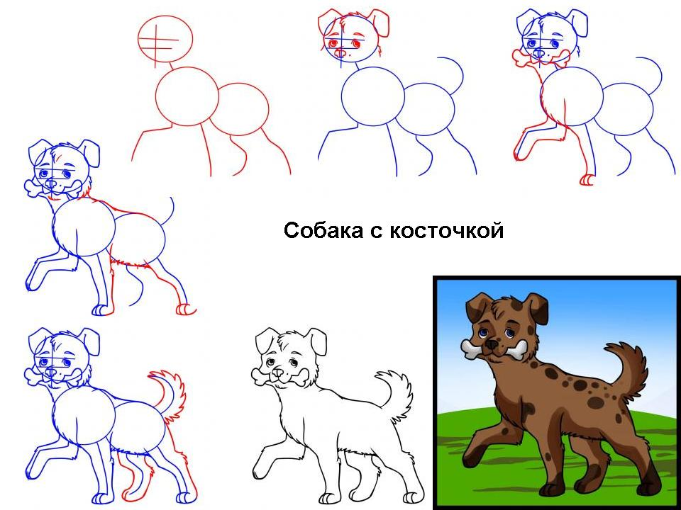 как нарисовать щенка спаниеля Pictures to ...: pinstake.com/как-нарисоватÑ...