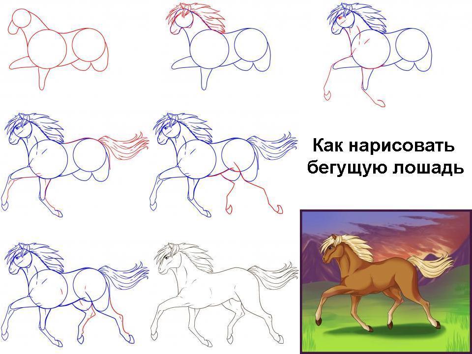 Программу для рисовать лошадей