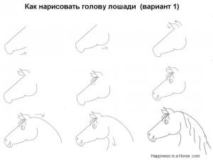 Как нарисовать голову лошади (вариант 1)