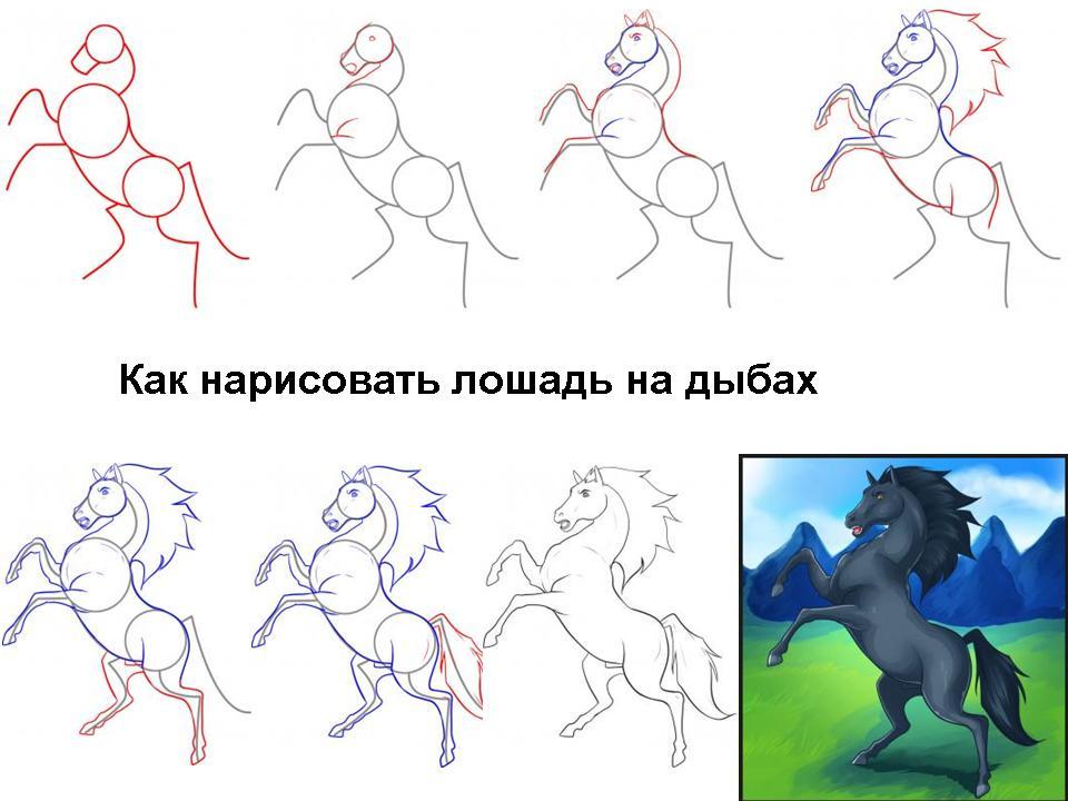 Поэтапные уроки по рисованию лошадей