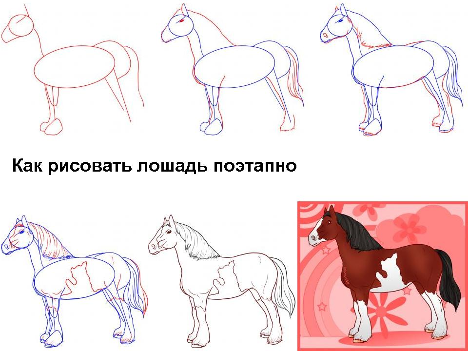 Как нарисовать лошадь - Мастер-классы ...: vernisage.ucoz.ru/publ/kak_narisovat_loshad/1-1-0-50