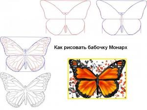 Как рисовать бабочку Монарх