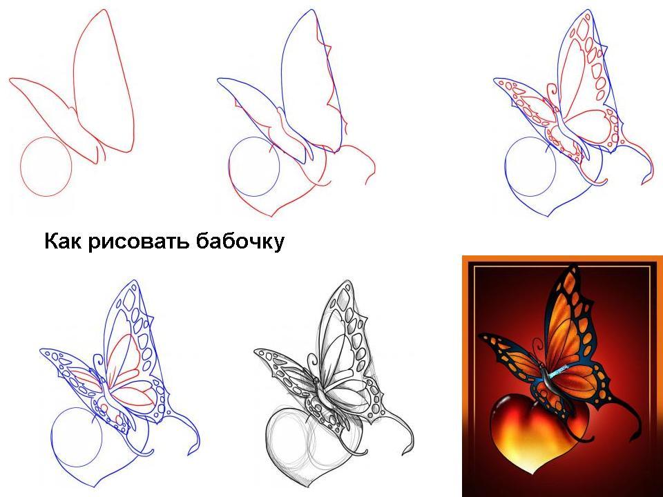 казалось - что может быть проще рисования бабочки? крылышки, усики и готово. однако, интернет просто пестрит...
