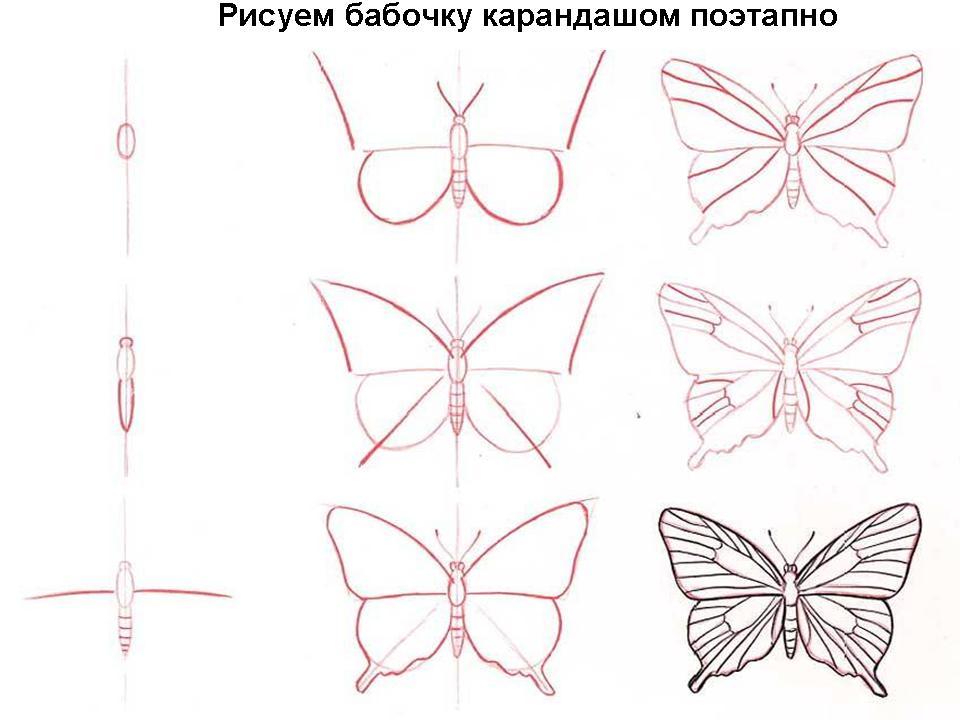 Рисуем бабочку карандашом