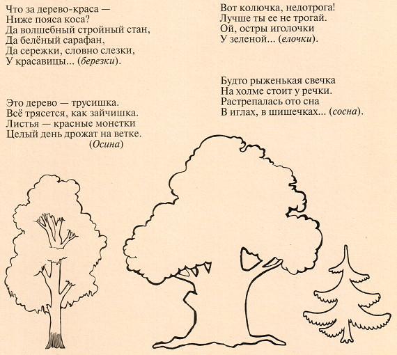 Загадки о деревьях