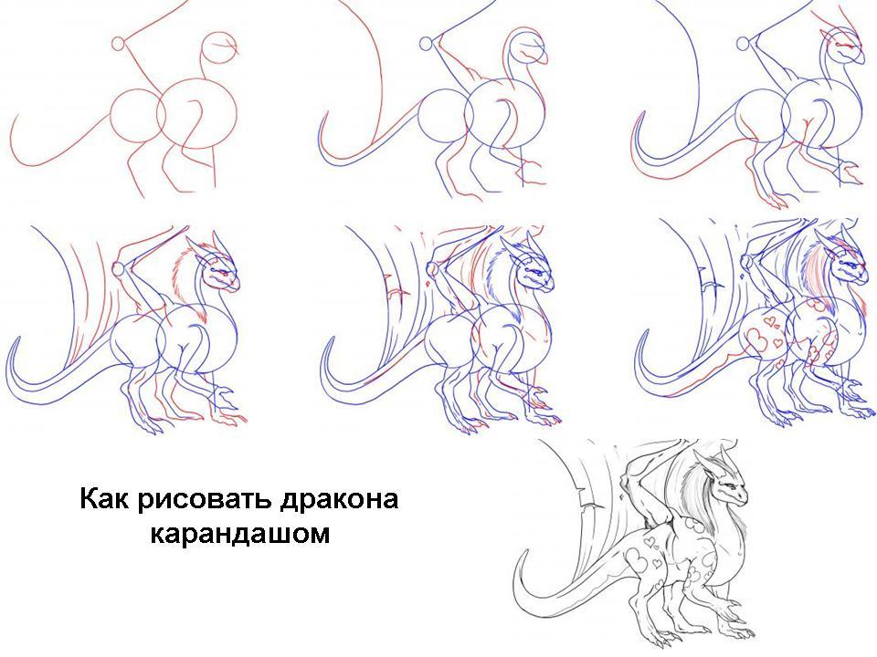 дракон фото урок