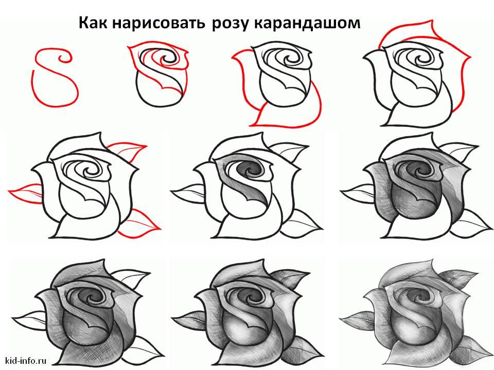 Как нарисовать картинку в 3d карандашом поэтапно с фото