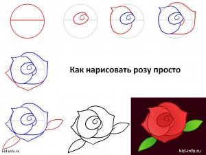 Как нарисовать розу просто
