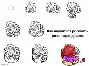 Как научиться рисовать розы карандашом