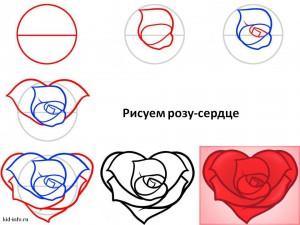 Рисуем розу-сердце