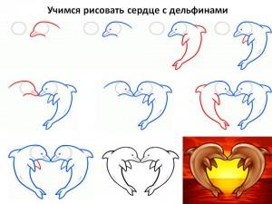 Учимся рисовать сердце с дельфинами