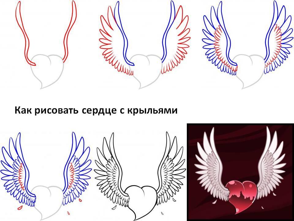 Как нарисовать крылья на сердце карандашом поэтапно