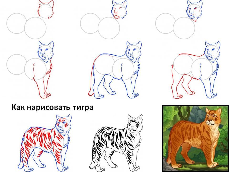 Картинки тигра морда