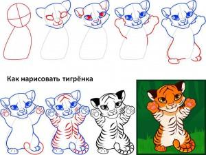 Как нарисовать тигрёнка