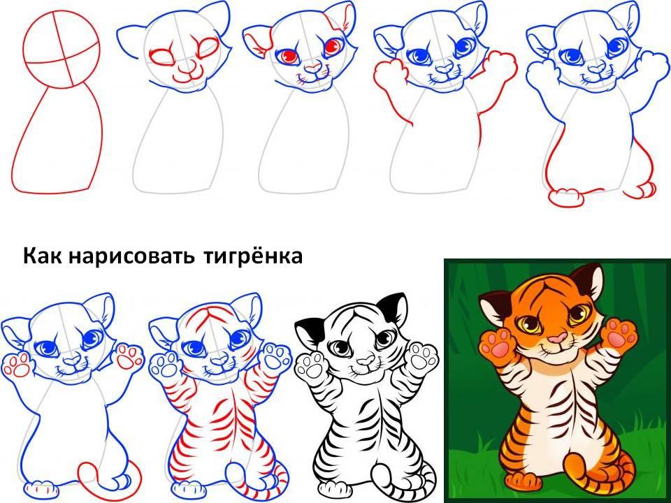 Как рисовать мультяшного тигрёнка