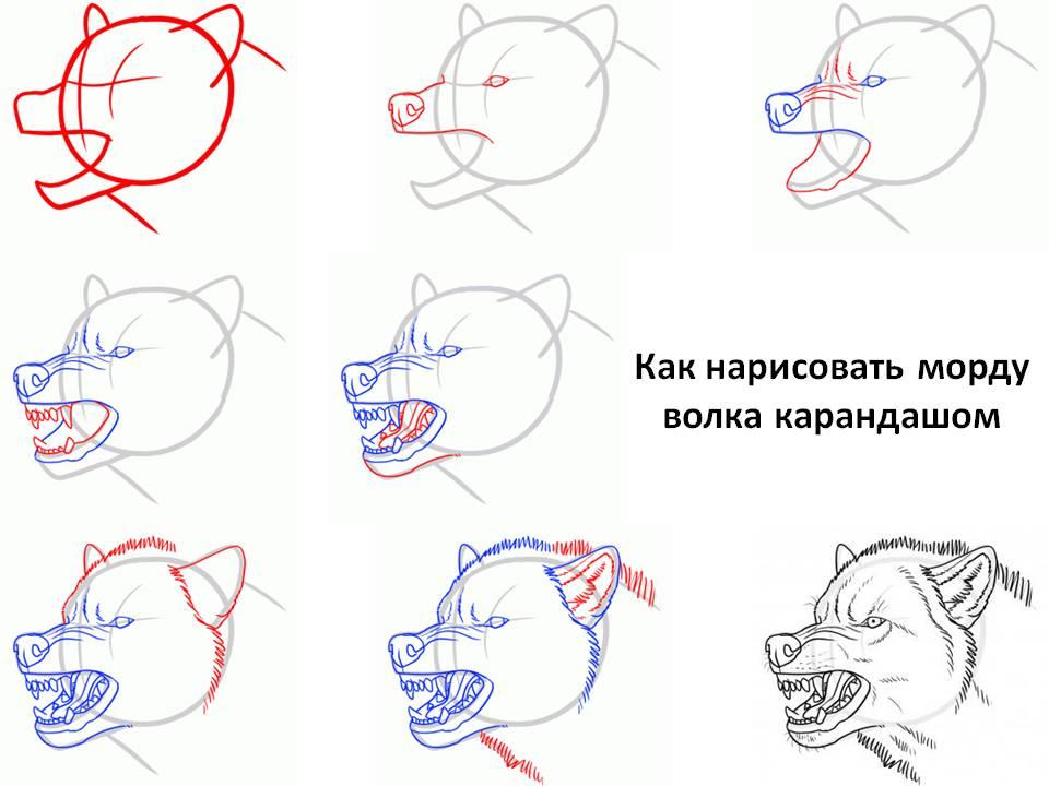 Как нарисовать строителя ребенку в садик