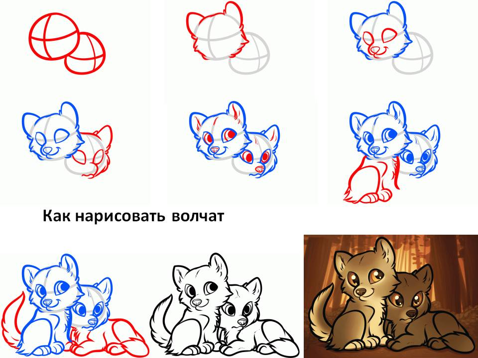 Пошаговые как нарисовать волка
