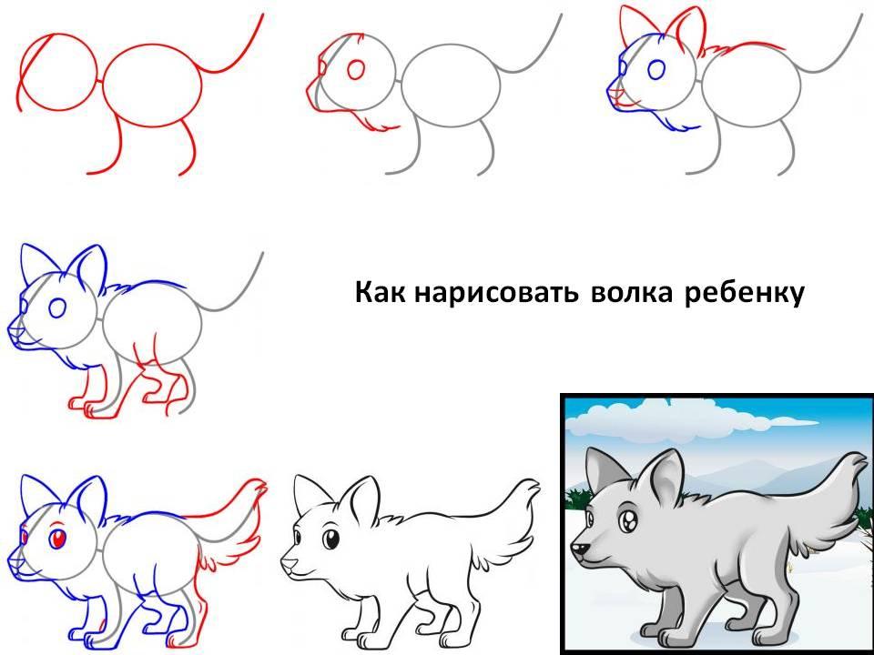 Как нарисовать волка ребёнку