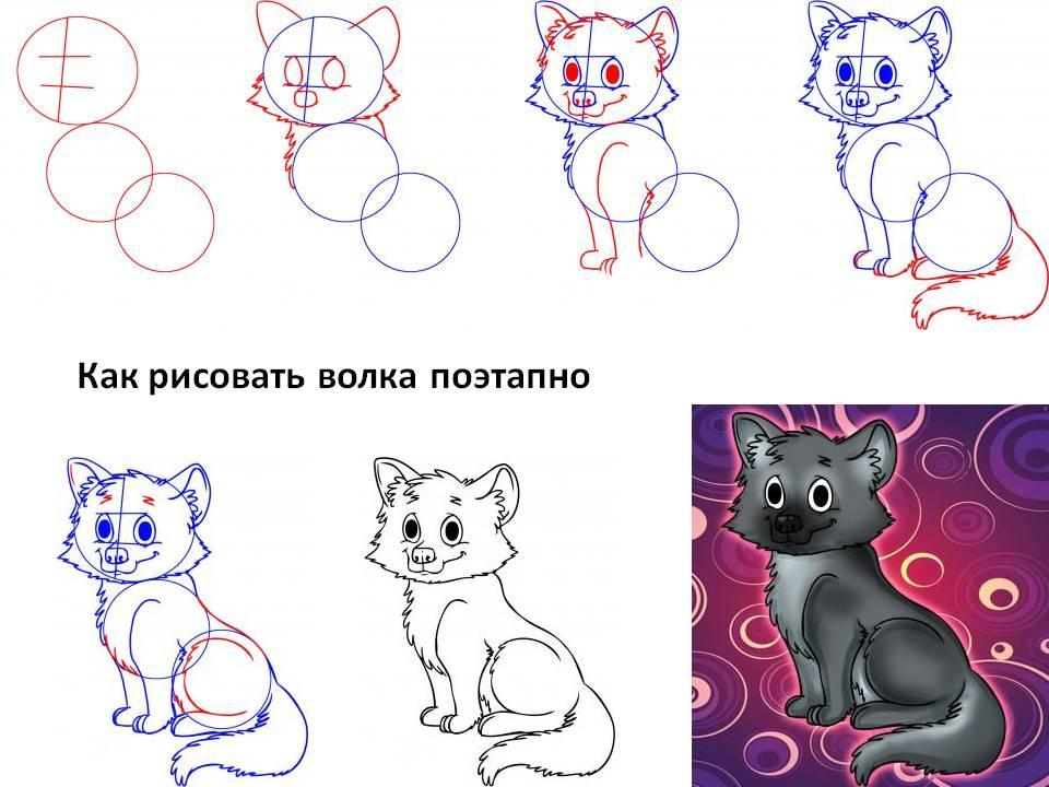 Как рисовать волка поэтапно