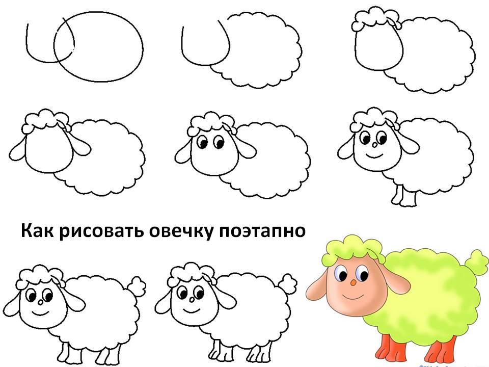 Как рисовать овечку поэтапно