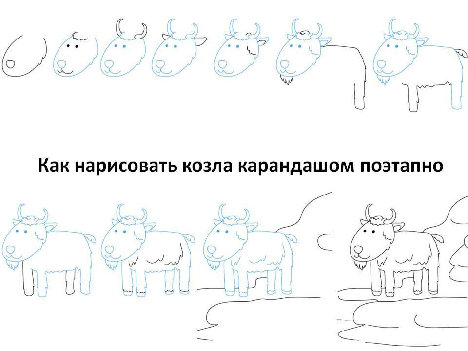 Рисовать поэтапно козла