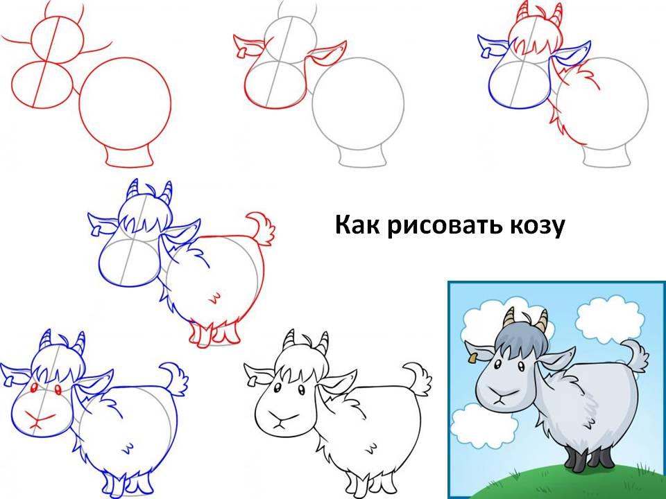 Коза нарисованная поэтапно