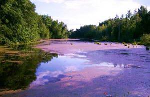 Озеро под Москвой