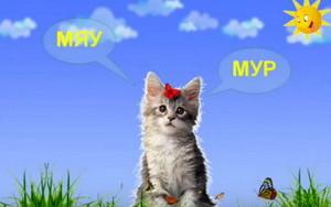 video-pro-zhivotnyx-dlya-detej