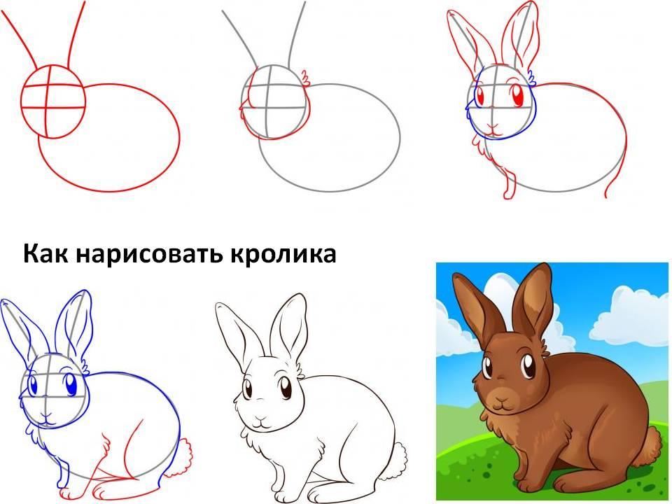 Рисунки как рисуют кролика