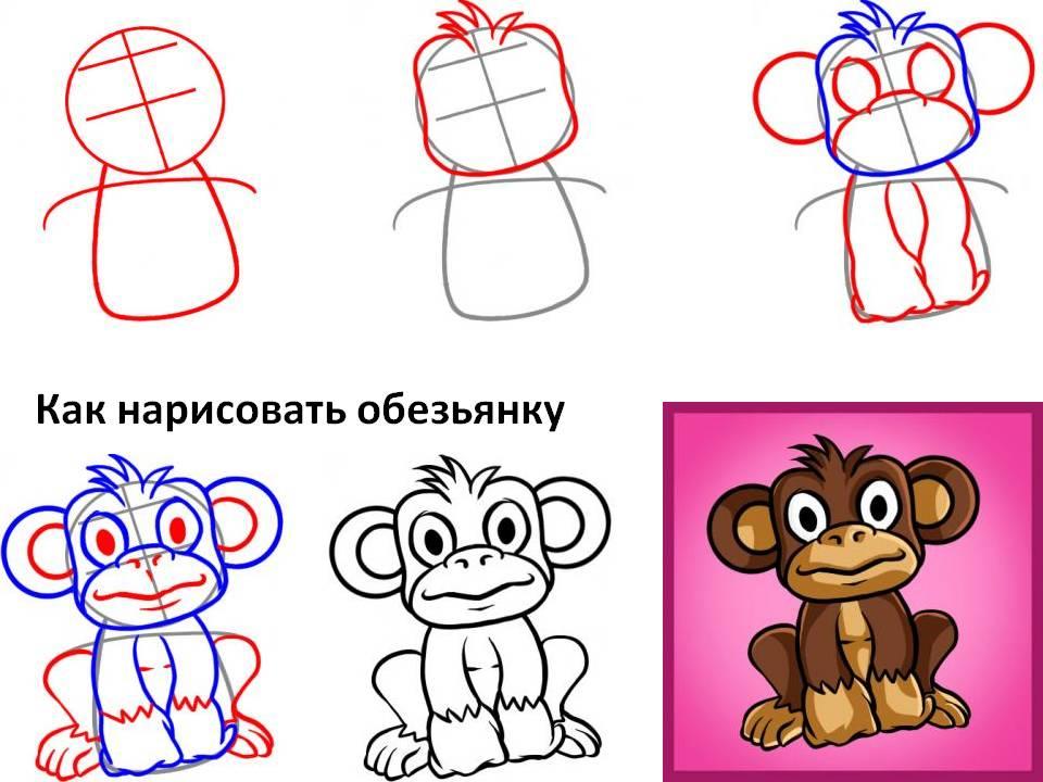 Как нарисовать обезьянку