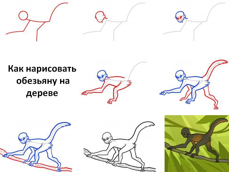 Как нарисовать обезьяну на дереве