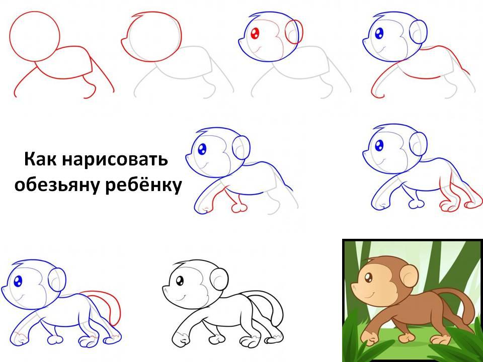 Как нарисовать обезьяну не поэтапно