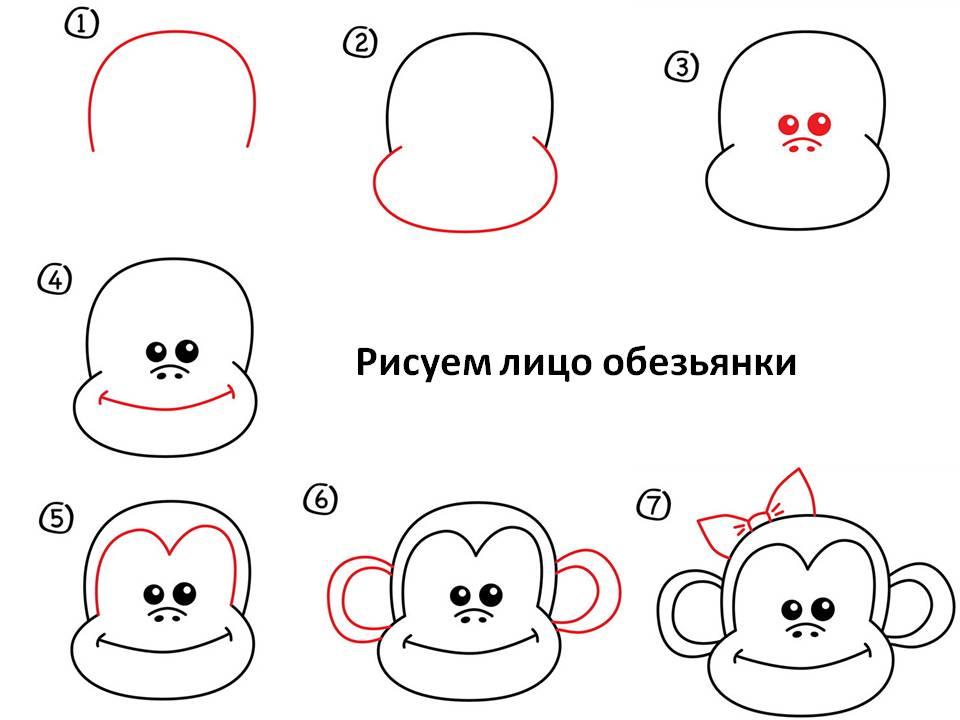 Рисуем лицо обезьянки