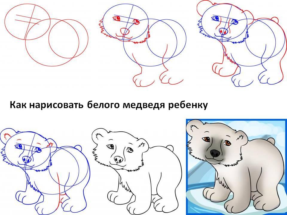 Как нарисовать белого медведя ребёнку