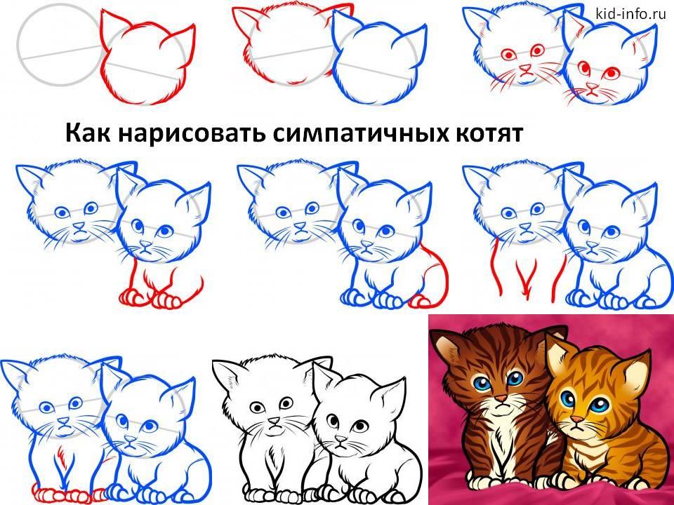 Как нарисовать симпатичных котят