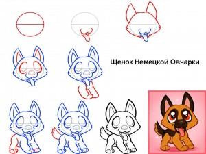 Как нарисовать щенка Немецкой овчарки