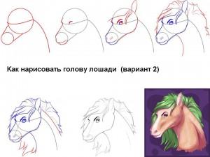 Как нарисовать голову лошади (вариант 2)