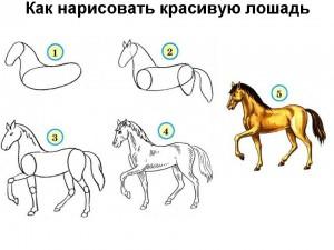 Как нарисовать красивую лошадь