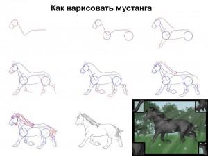 Как нарисовать мустанга
