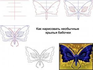 Как нарисовать необычные крылья бабочки